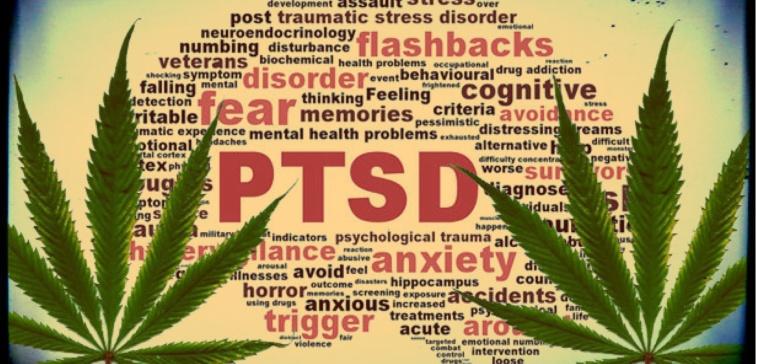 MJ PTSD